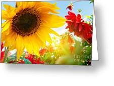 Spring Flowers In The Garden Greeting Card