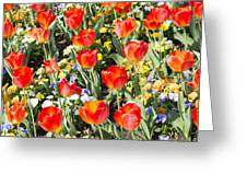 Spring Flowers No. 1 Greeting Card