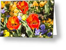 Spring Flowers No. 3 Greeting Card