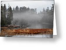 Spring Fog Greeting Card