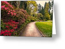 Spring Footpath Greeting Card