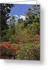 Spring Garden Greeting Card