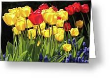 Spring Garden Sunshine Square Greeting Card