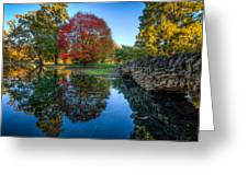 Spring Grove In The Fall Greeting Card