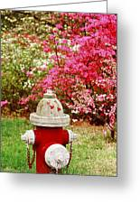 Spring Hydrant Greeting Card