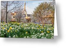Spring In Boston Greeting Card
