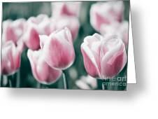 Spring In Love Greeting Card by Angela Doelling AD DESIGN Photo and PhotoArt