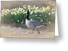 Spring In My Strut Greeting Card