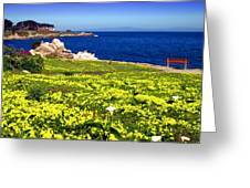 Spring In Pacific Grove Ca Greeting Card