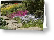 Spring In The Garden Dsc03678 Greeting Card