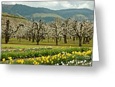 Spring In The Hood River Valley Greeting Card