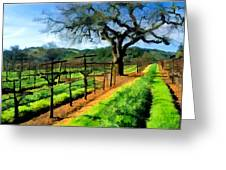 Spring In The Vineyard Greeting Card