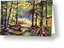 Spring In Woods Greeting Card