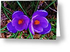 Spring Is Blooming Greeting Card