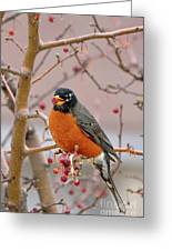 Spring Is Coming Greeting Card