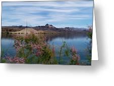 Spring Lake Mohave Greeting Card