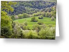 Spring Landscape Greeting Card