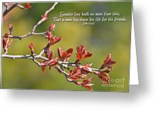 Spring Leaves Greeting Card With Verse Greeting Card