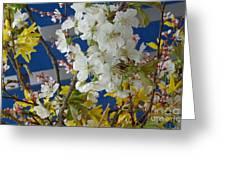 Spring Life In Still-life Greeting Card
