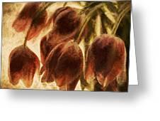 Spring Love Xix Greeting Card