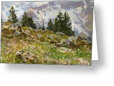 Spring On A Northern Slope Greeting Card