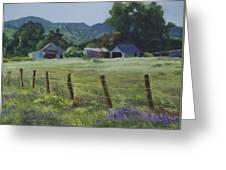 Spring Pasture Greeting Card