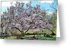 Spring Picnic Greeting Card