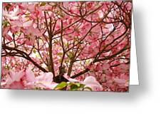 Spring Pink Dogwood Tree Blososms Art Prints Greeting Card by Baslee Troutman