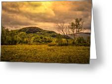 Spring Rain - White Mountains -maine Greeting Card