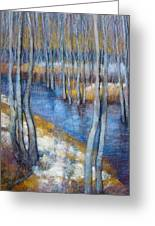 Spring River Thaw Greeting Card