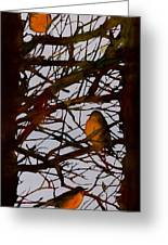 Spring Robins Gather Greeting Card