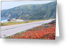 Spring, Route 1, California Coast Greeting Card