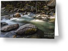 Spring Runoff Greeting Card