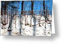 Spring Snow Greeting Card