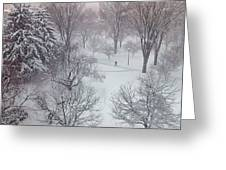 Spring Snow Greeting Card by Emily Clingman