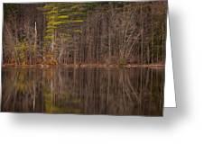 Spring Stillness Greeting Card