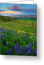 Spring Storm Passing Greeting Card by Mike  Dawson