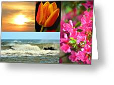 Spring Summer Collage Greeting Card