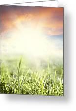 Spring Sun Greeting Card