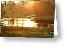 Spring Sunset Greeting Card by Alana Ranney