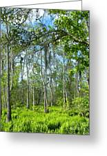 Spring Swamp Greeting Card