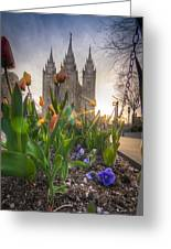 Spring Temple Greeting Card