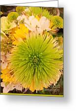 Spring Things Greeting Card