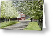 Spring Time At The Farm Greeting Card