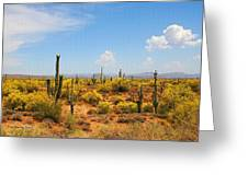 Spring Time On The Rolls - Arizona. Greeting Card