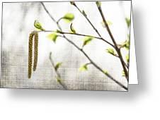 Spring Tree Branch Greeting Card