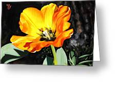 Spring Tulip Greeting Card