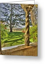 Spring Vineyards Greeting Card