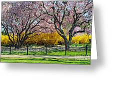 Spring Walk Greeting Card