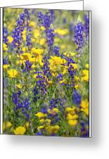 Spring Wildflower Bouquet  Greeting Card